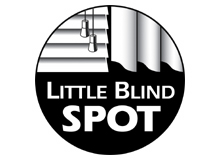 Spot Blind Spot